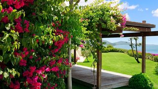 Hotel Kempinski Barbaros Bay Bodrum Garten