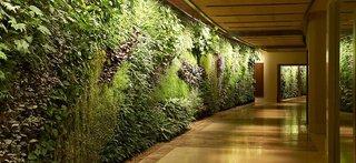 Hotel Sofitel Dubai The Palm Lounge/Empfang